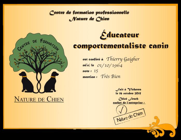 certificat-ndc-Thierry