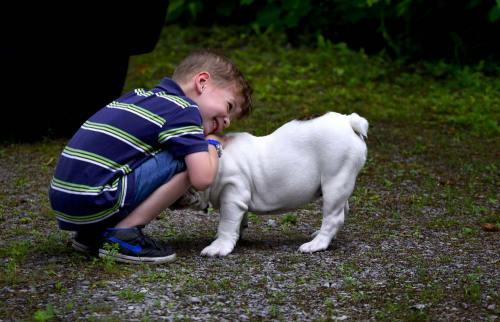 chien-et-enfant