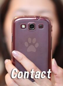 contact-dog-educ-45